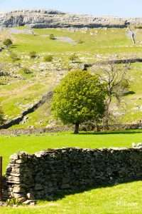 22 Yorkshire Dales Photos – Ribblesdale