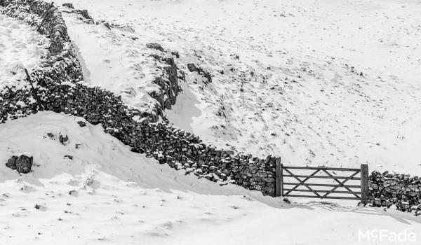 453 dales malham ribblesdale snow