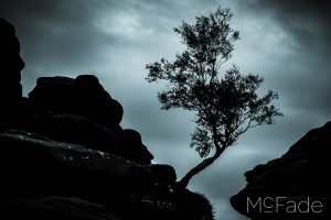 Lightroom Recovery – Transforming a Dull Day Landscape